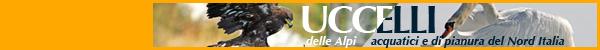 UCCELLI delle Alpi e UCCELLI acquatici e di pianura del Nord Italia